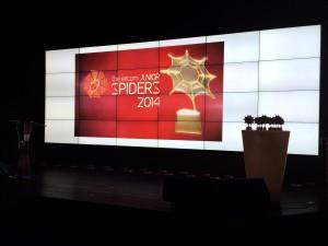 The Eircom Junior Spiders